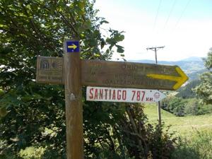 Day 2 Camino de Santiago 097
