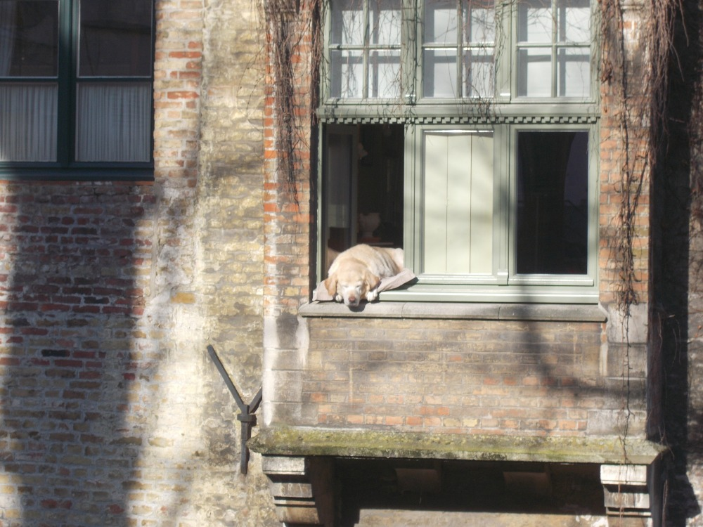Bruges (Brugge), which has no witches, and Ghent. (6/6)