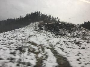 Nieve-Elurra 016