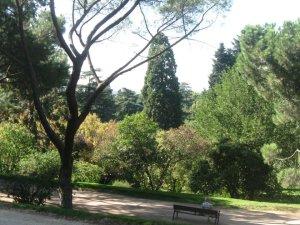 parque de oeste