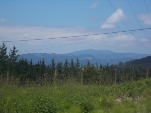Camino de Santiago Etapa 6 Markina-Gernika 136