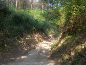 Camino Day 7 Gernika-Zamudio 019