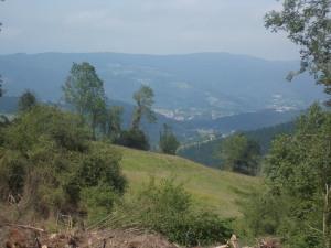 Camino Day 7 Gernika-Zamudio 071