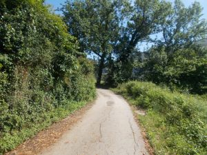 Camino de Santiago Ortuella-Castro Urdiales 024