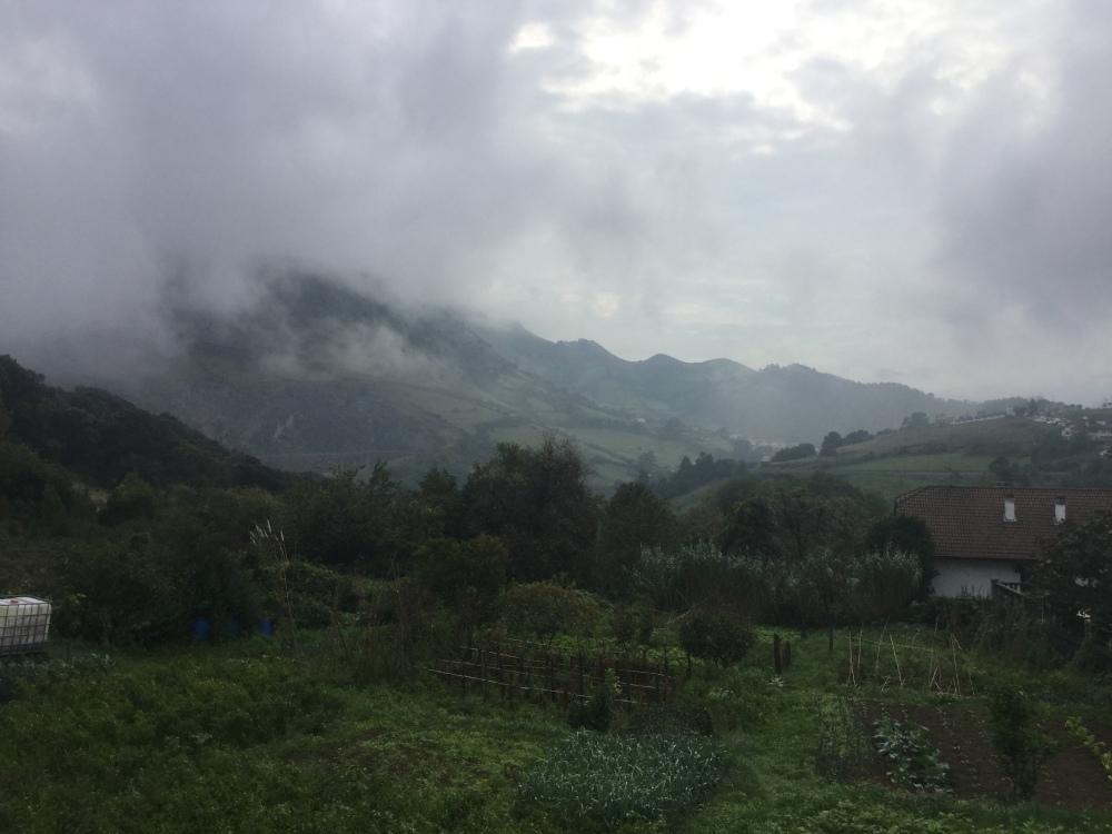 Punta Lucero in the mist. (5/6)
